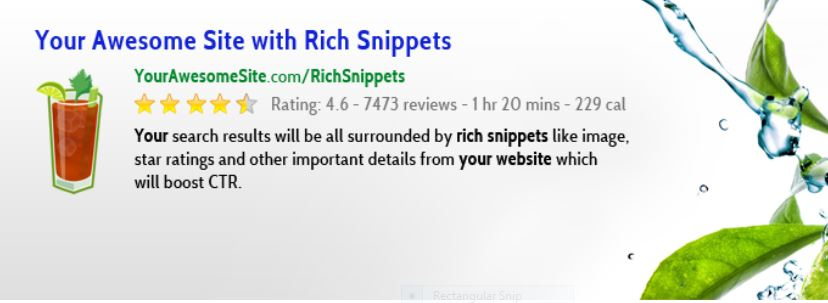 Rich Snippets in WordPress